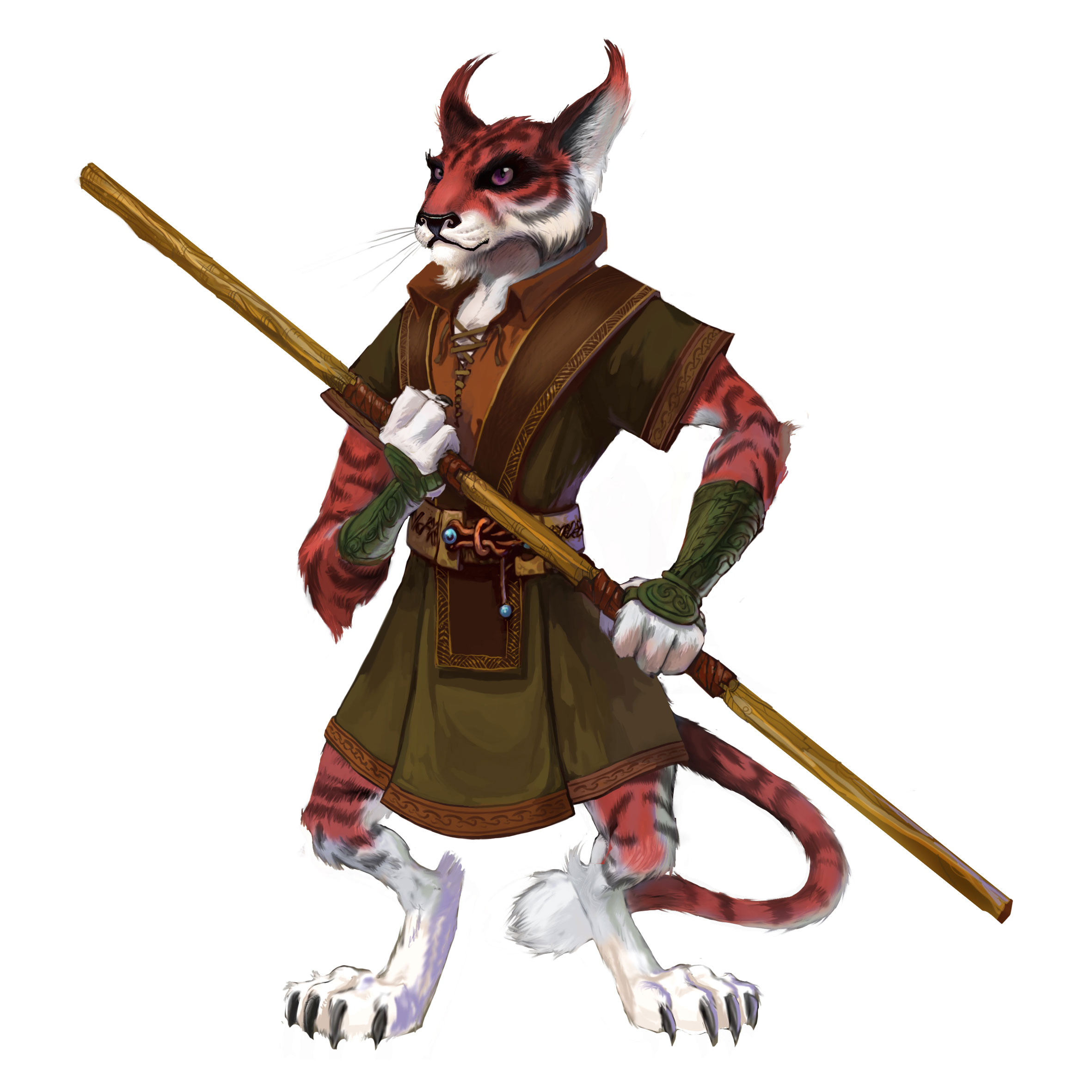 http://www.darkspyro.net/skins/set/images/random_full/dawn_cheetah2.jpg